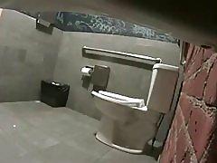 Salon WC voajer po loyalsock
